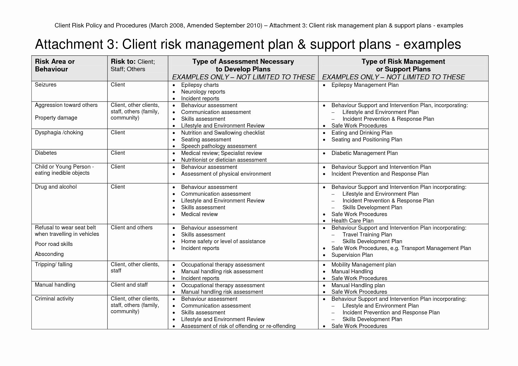 The Enchanting Enterprise Risk Management An Template New Example