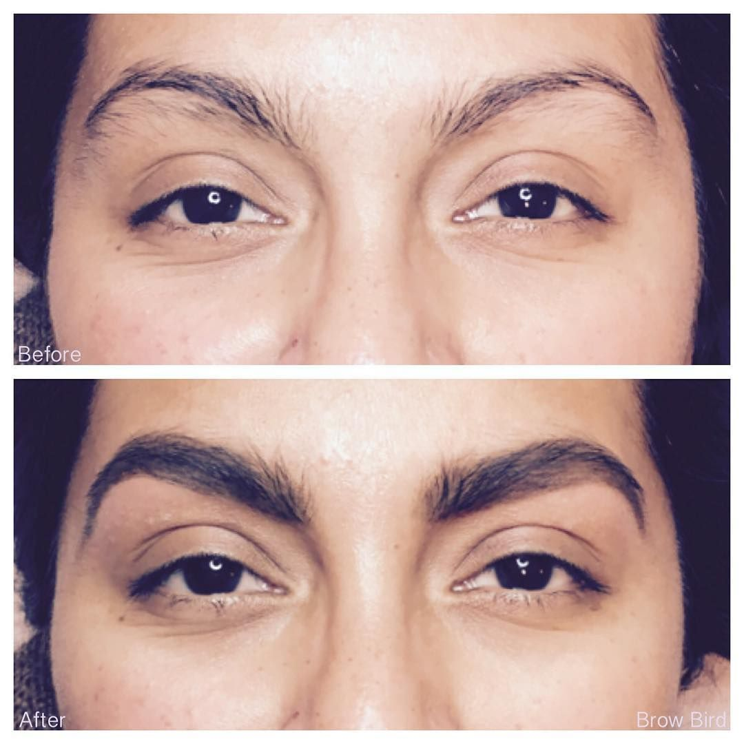 """68a09e4cd5 BrowBird.com Online Booking on Instagram  """"We roll out fab brows all ..."""