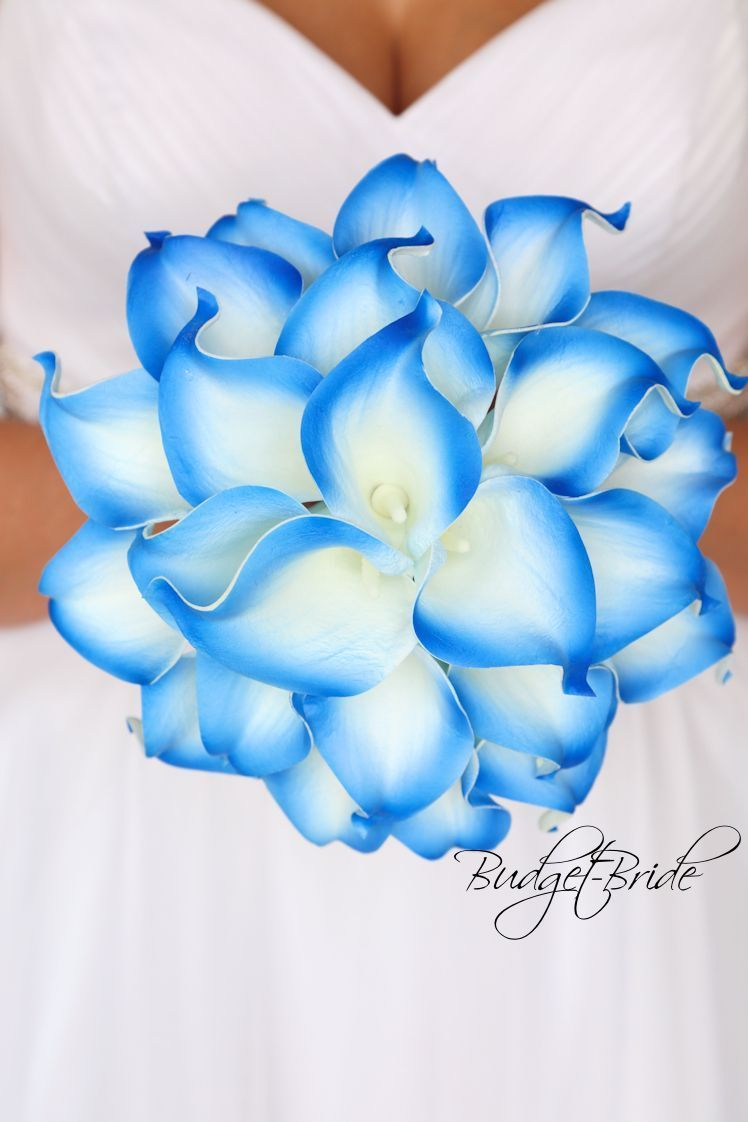 Royal blue horizon blue tipped real touch calla lily wedding bouquet