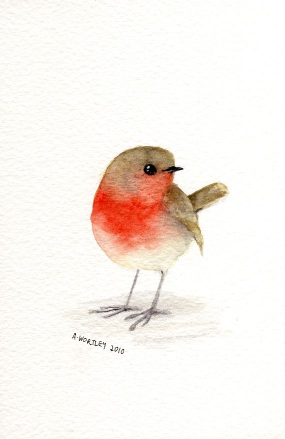 Little Red Robin Original Watercolour Watercolor Bird Bird