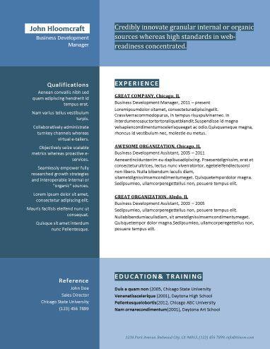 215-Great-Blue-Dividejpg 382×494 pixels Resume options - business development assistant sample resume
