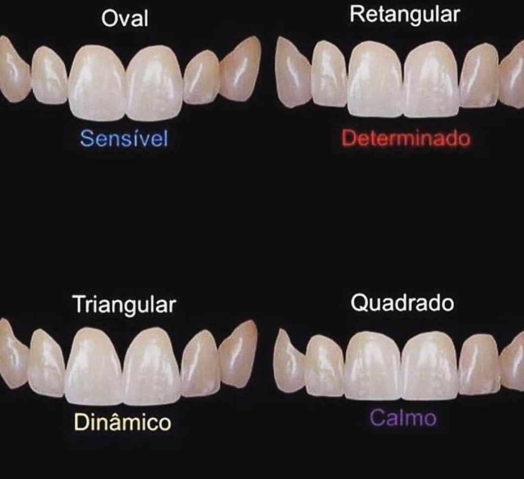 Morfologia Dental Dental Anatomy Dental Aesthetics Dental Cavities