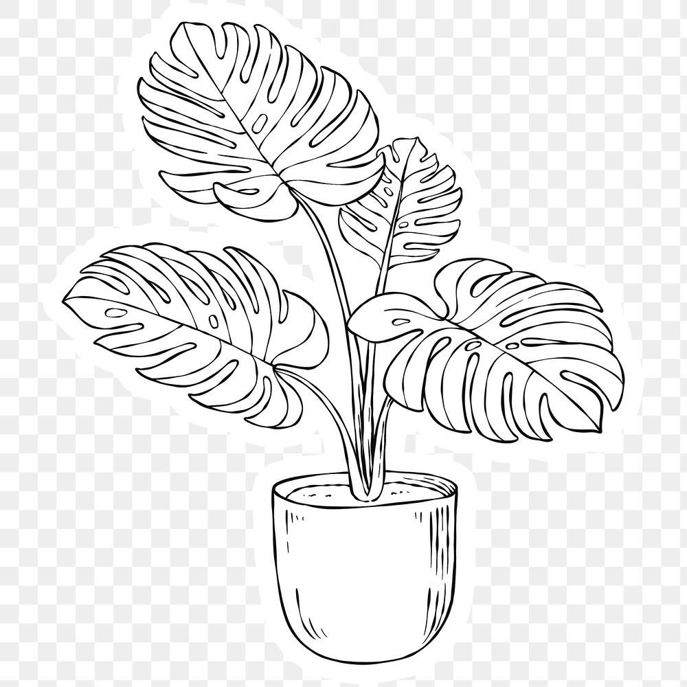 Download free png of Png monstera plant black and white sticker by Noon about monstera, black and white stickers, line leaf, plant outline, and black and white 2448294