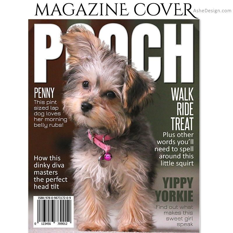 Dog magazine cover 8x10 pooch dog magazine pet
