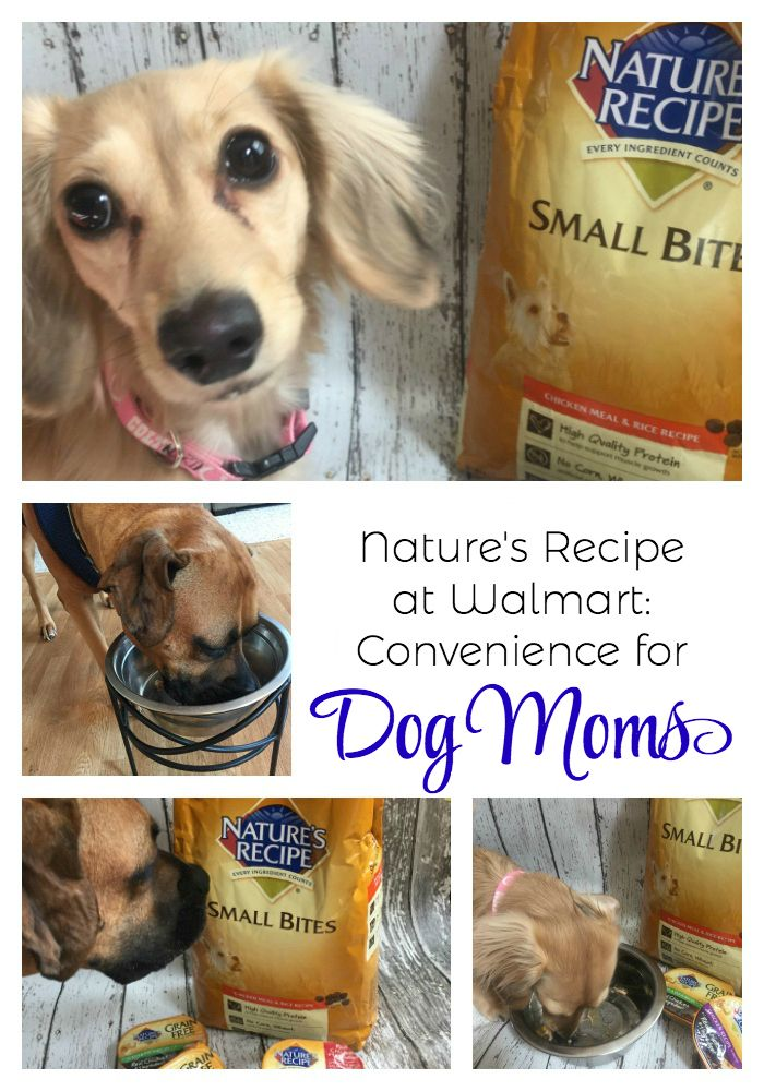 Nature S Recipe Now Available At Walmart Dogmomlife The