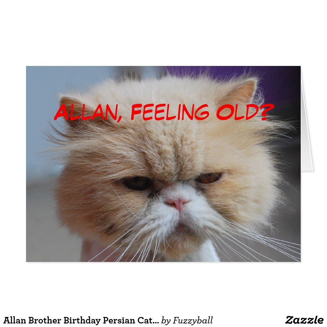 Allan brother birthday persian cat humor card brother birthday allan brother birthday persian cat humor card you can customize to any name kristyandbryce Gallery
