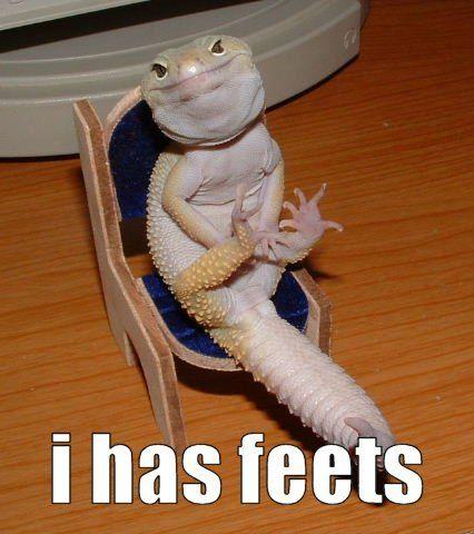Hahahaha this made me laugh so hard for some reason