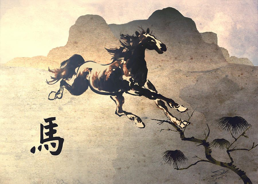 Year Of The Horse by M Spadecaller Year of the horse