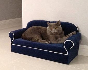 Marvelous Sofa For Pets