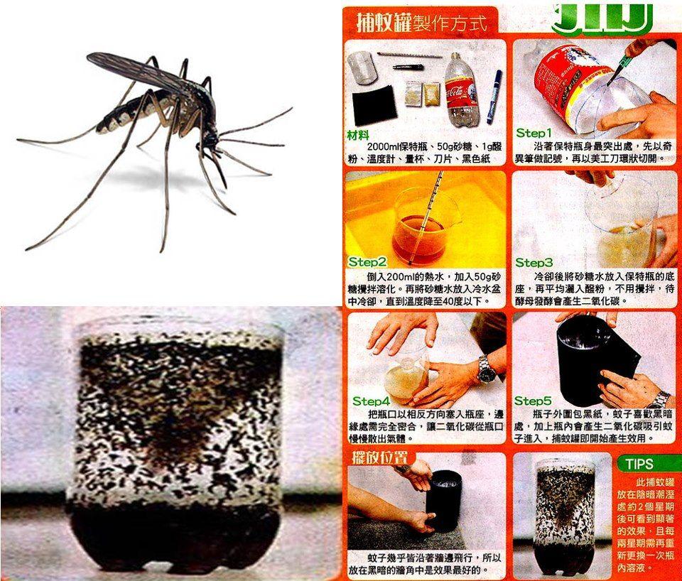 DIY Mosquito Trap Tutorial | Mosquito trap Mosquito trap ...