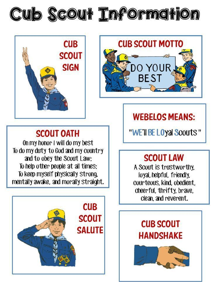 Refreshing image within boy scout oath and law printable