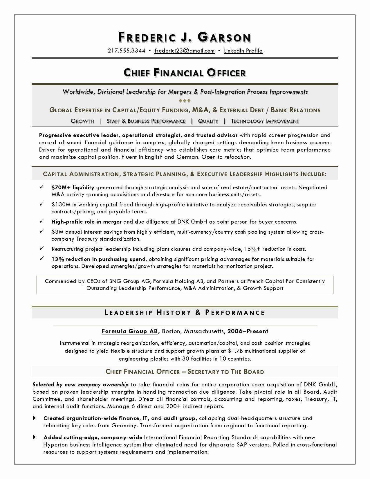 23 Chief Financial Officer Resume Example in 2020 Cover