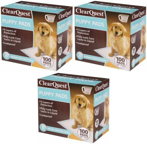 How To Teach Your Cat Use Litter Box Puppy Pads Dog Training Dogs