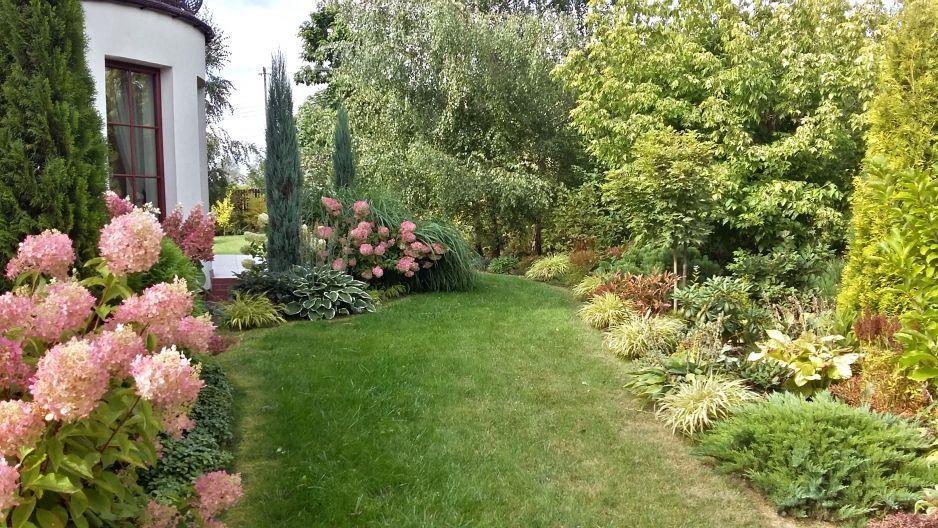 Rabata Z Hortensjami Poznym Latem Ogrod Na Cztery Pory Roku Plants Sidewalk