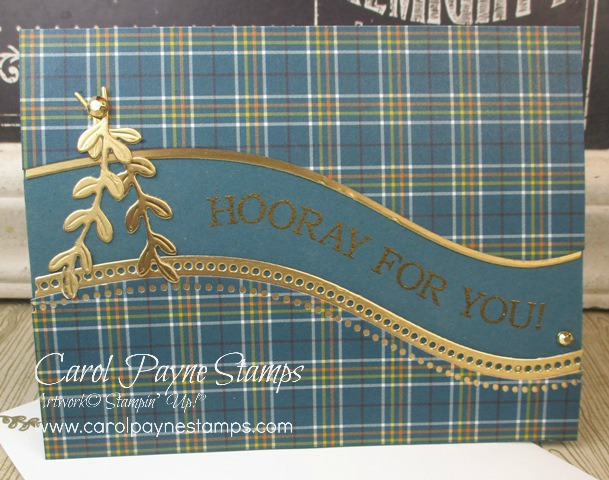 Plaid Quite Curvy by Carol Payne - Cards and Paper