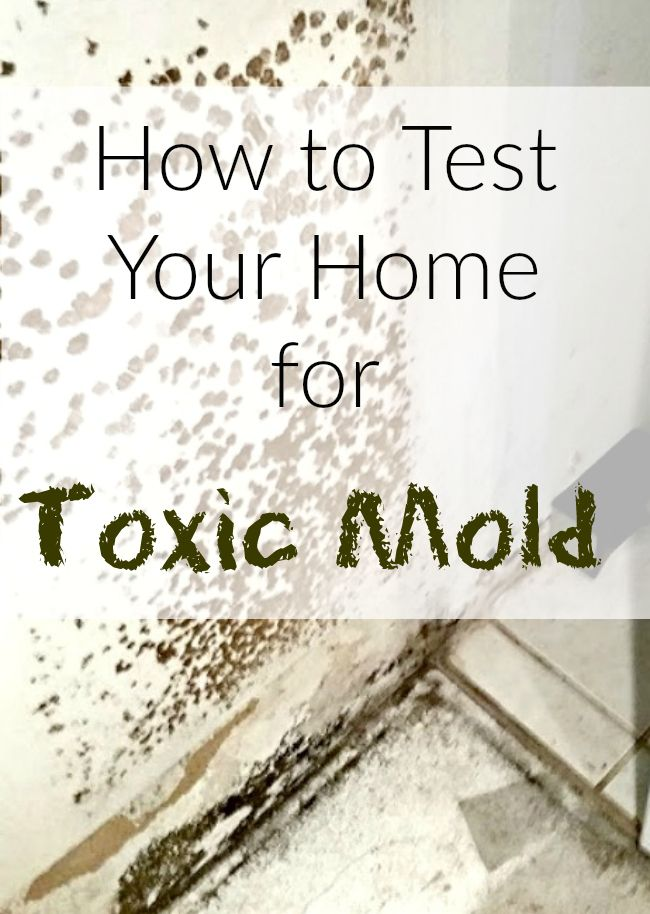 Wondering How To Test Your Home For Mold Do You Have Unexplainable Health Issues That Could Be Connected With