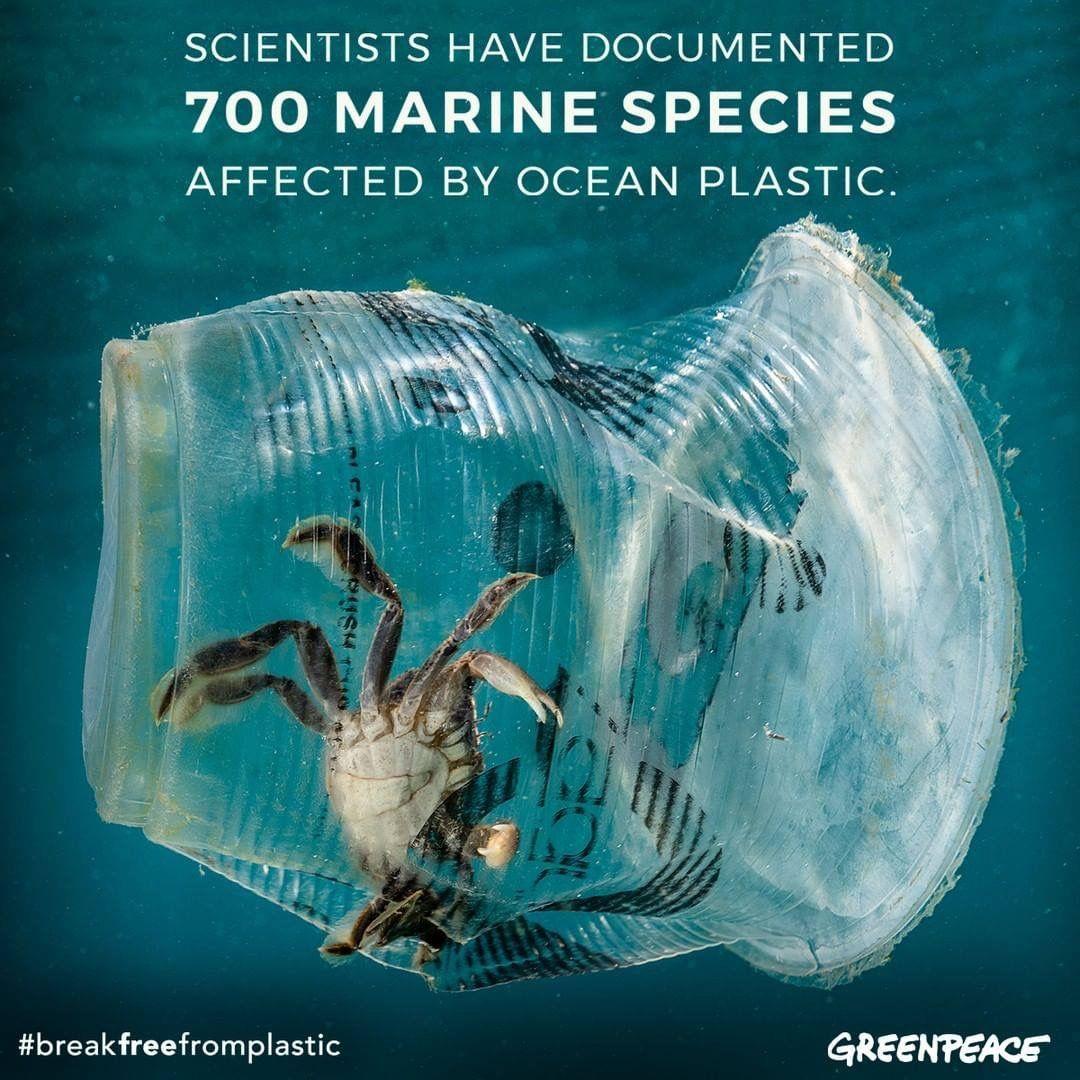 Pin by Денис Пакура on Экология Plastic pollution, Ocean