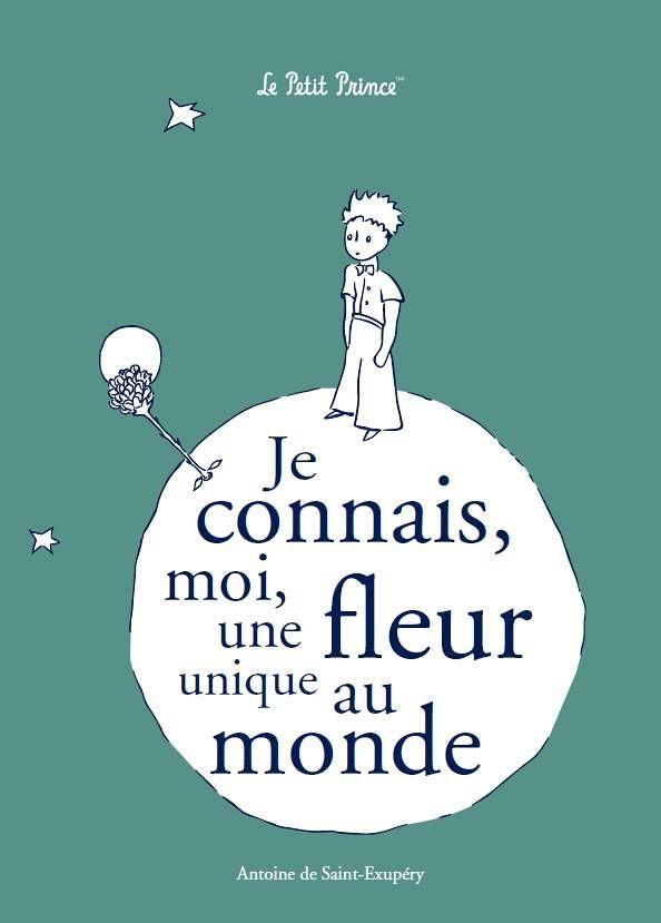 J Adore Le Petit Prince Favorites Pinterest Prince Quotes