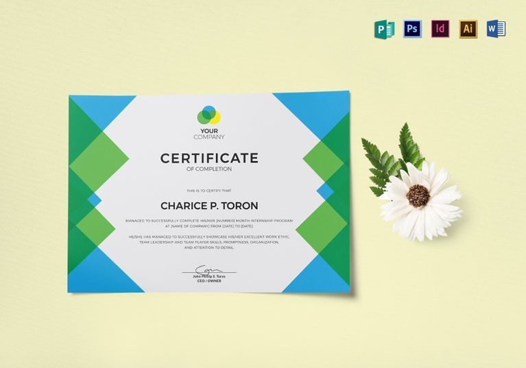 Company internship certificate template certificate design company internship certificate template yelopaper Choice Image