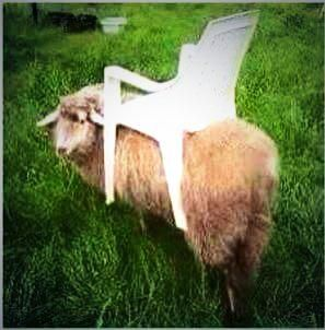 Hamish Clarke On Twitter Riding Lawn Mowers Farm Jokes Farmer Jokes