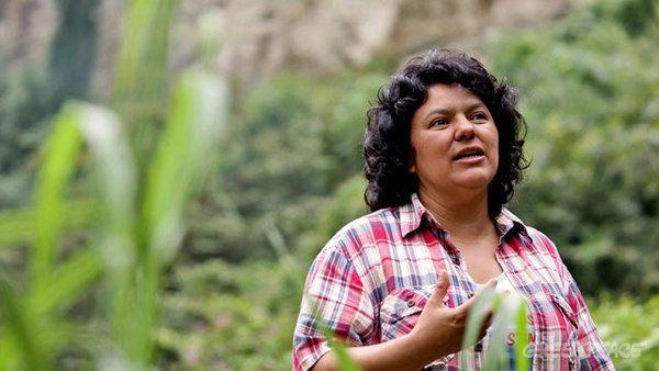 (27) Twitter   Liderança indígena do Greenpeace, é assinada em Honduras.