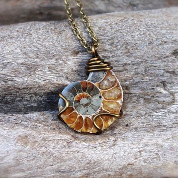 Ammonite fossil necklace wire wrapped shell fossil jewelry ammonite fossil necklace wire wrapped shell fossil jewelry natural ammonite jewelry wiccan necklace aloadofball Images