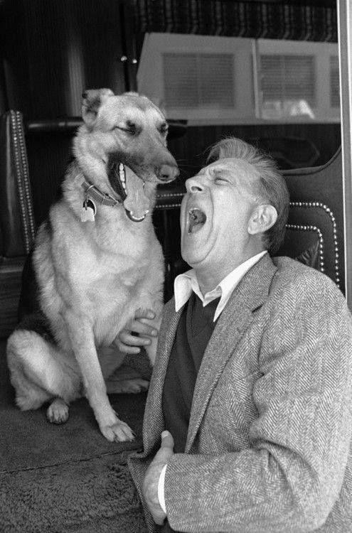 Jack Klugman Man And Dog Dog Probiotics