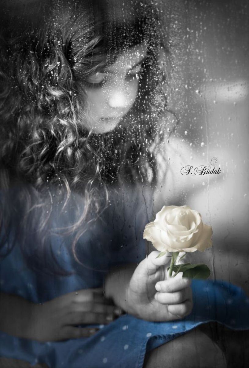 Black and white pictures black n white love flowers colour splash monochrome
