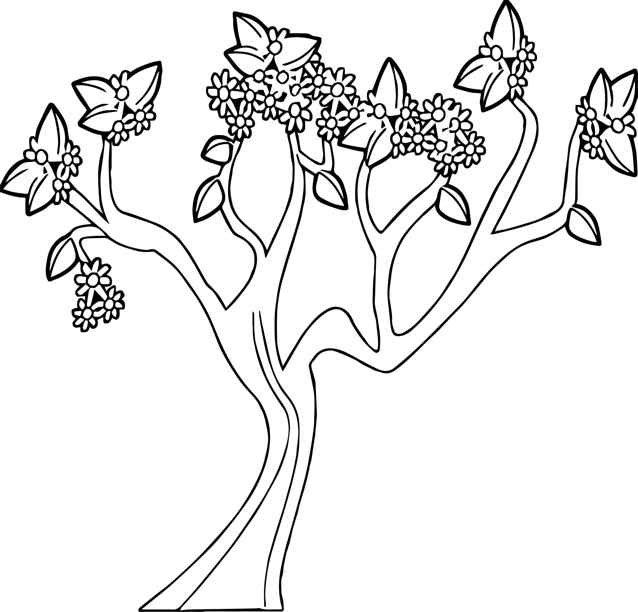Nice Spring Tree Coloring Page Tree Coloring Page Flower