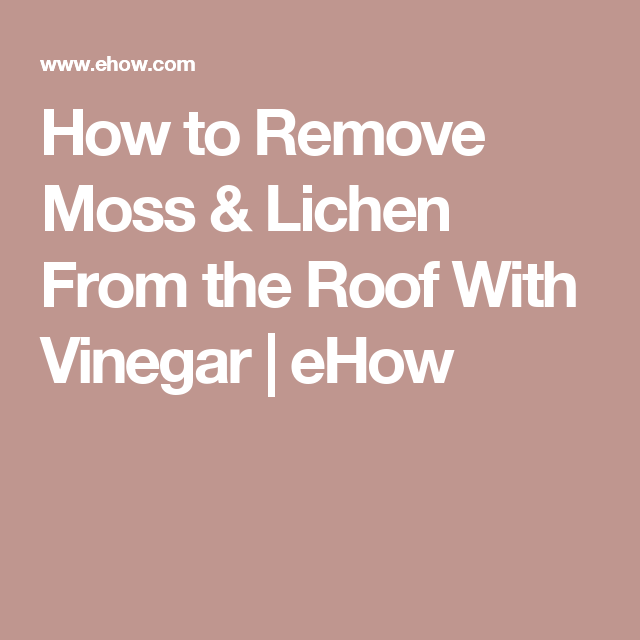 How To Remove Moss Lichen From The Roof With Vinegar Hunker Mold Remover How To Remove Adhesive Grease Stains