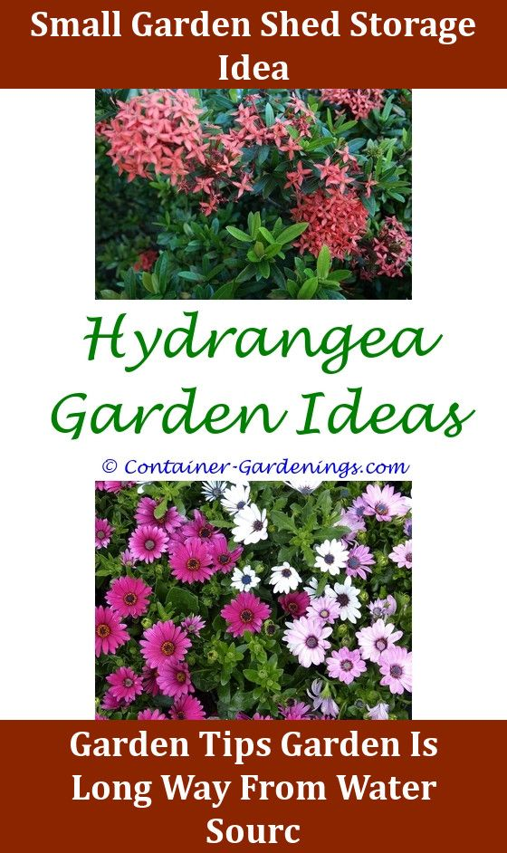 Painted Garden Pots Ideas,Gargen fairy garden cake ideas pleasure ...