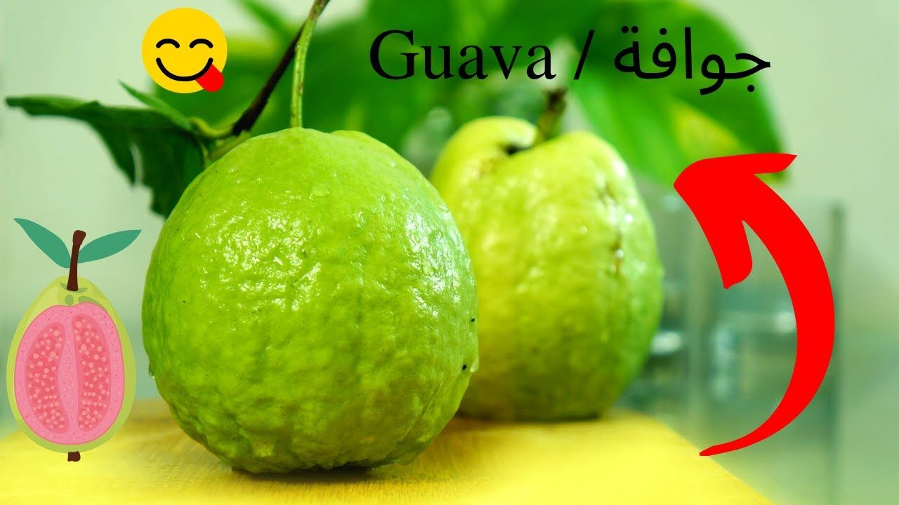 Pin By Alialsibaie On Fruit Of Coconuts ثمرة جوز الهند Some Beautiful Pictures Guava Fruit