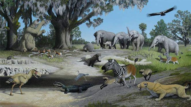 Risultati immagini per pliocene