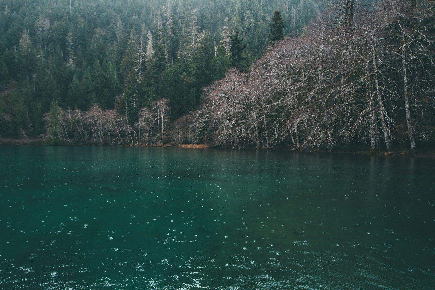 Top 5 #Hikes In #Washington  Httpsmontemlifecom