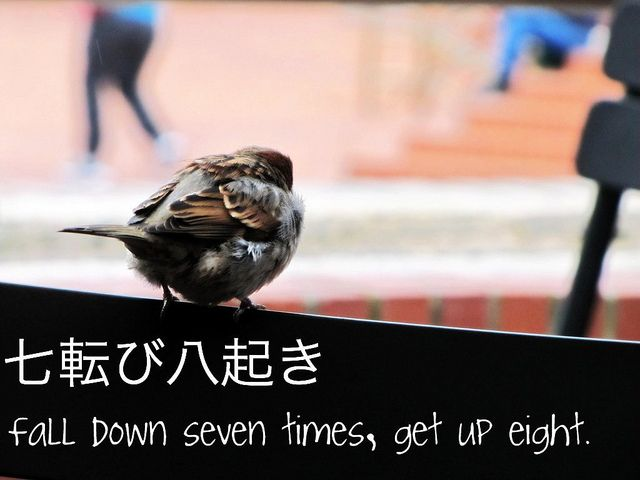 """""""Fall down seven times, get up eight."""" by єthar, via Flickr"""