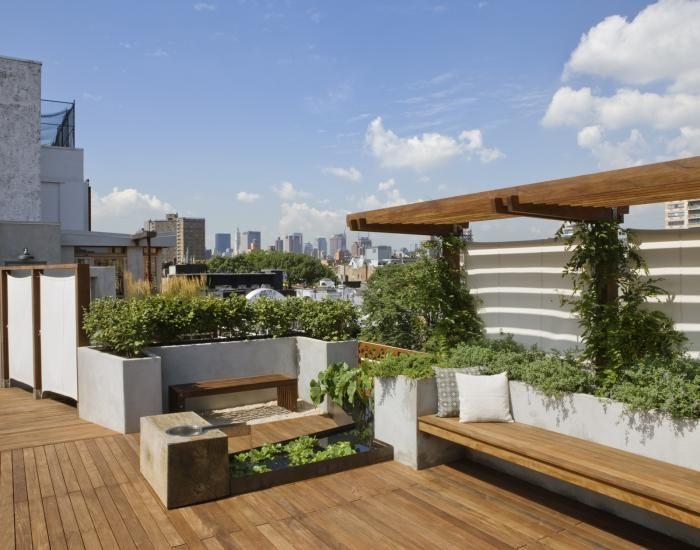 The Architect Is In Roof Gardens With Pulltab Design Remodelista Roof Garden Design Roof Landscape Rooftop Design