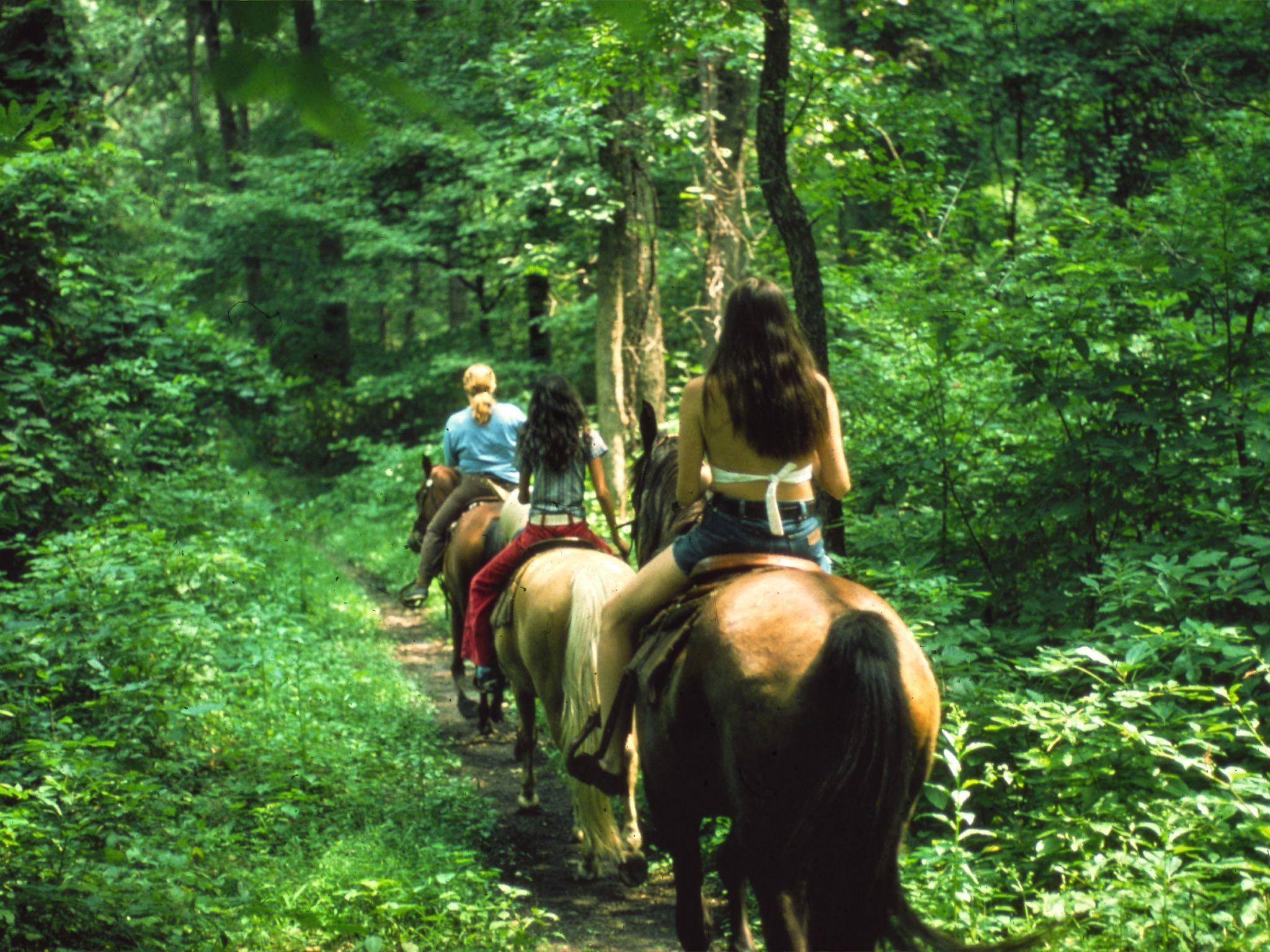 Horseback riding fairmont wv
