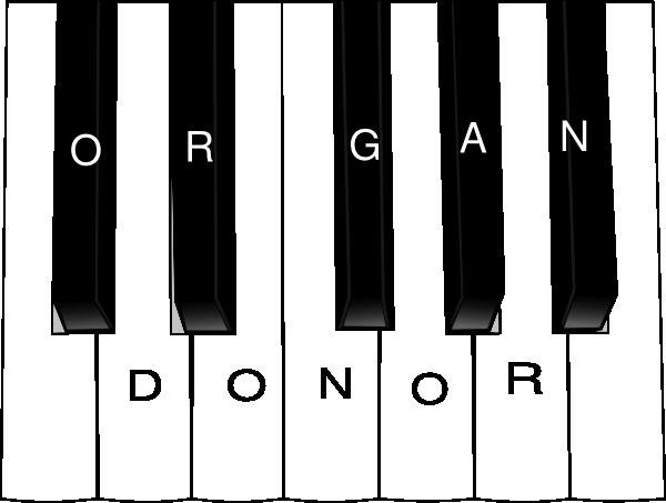 Pin By H2g1 On Organ Tissue Eye Donation Piano Studio Piano Piano Teacher