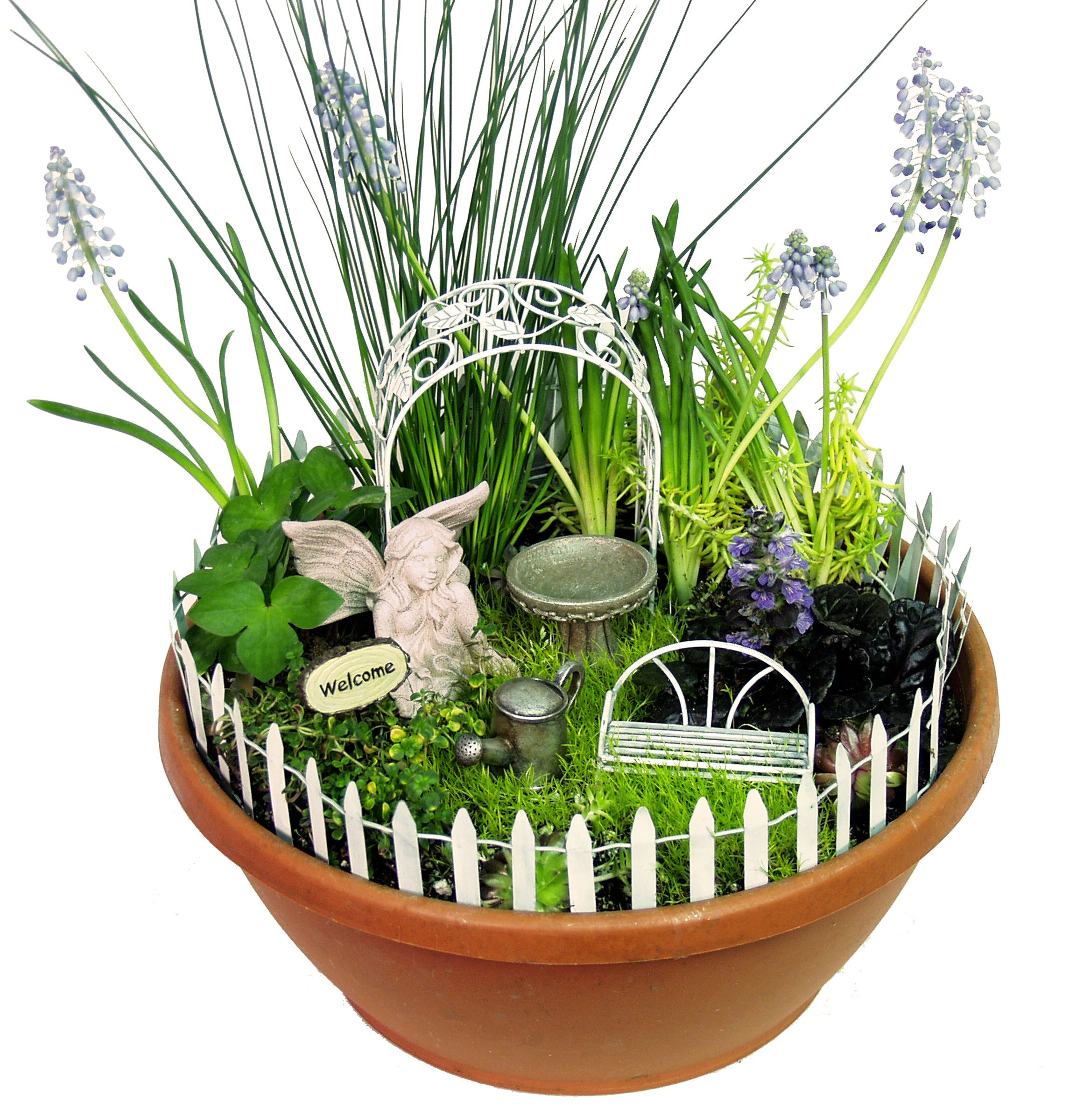 Top 25 ideas about FairyMini Garden Kits on Pinterest Fairy