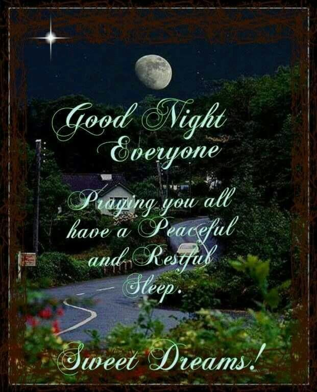 Good Night Everyone Sweet Dreams Good Night Prayer Good Night Greetings Good Night Sweet Dreams
