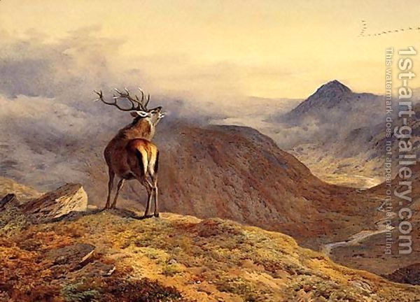 Red Deer Roaring Thorburn Animal Counted Cross Stitch Pattern