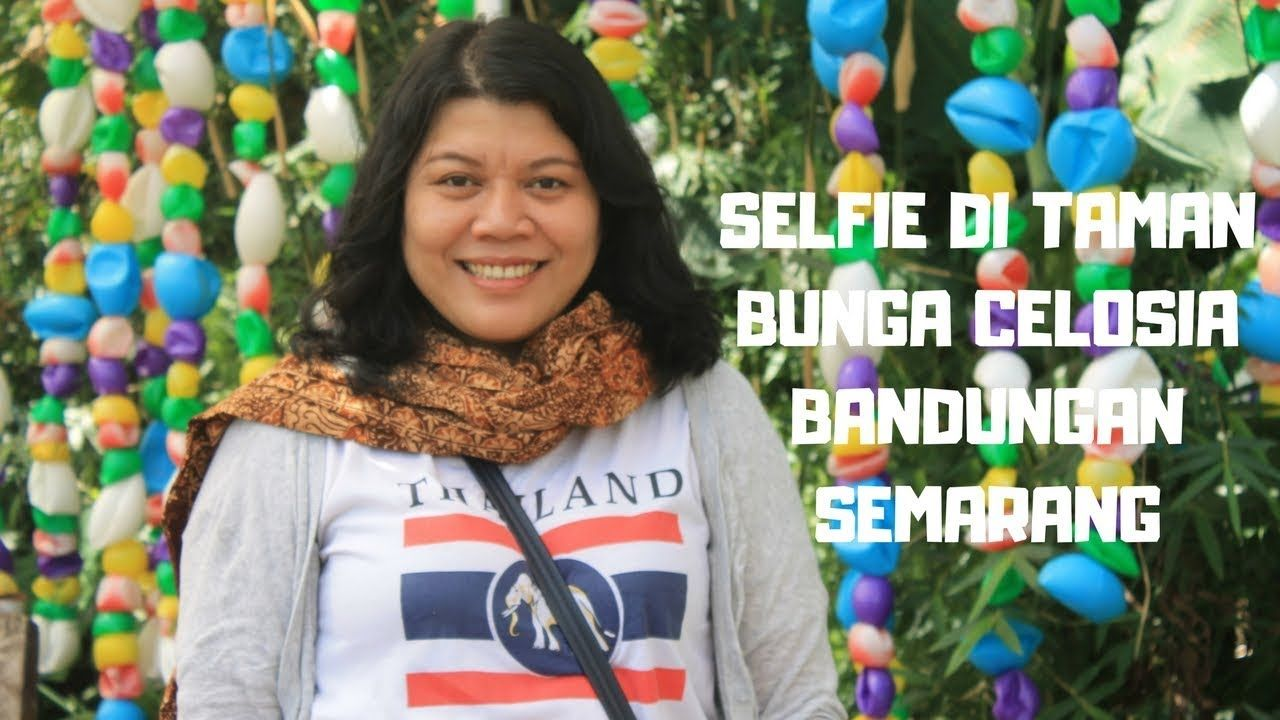 Wisata Taman Bunga Celosia Bandungan Ngopi Di Banaran Coffe