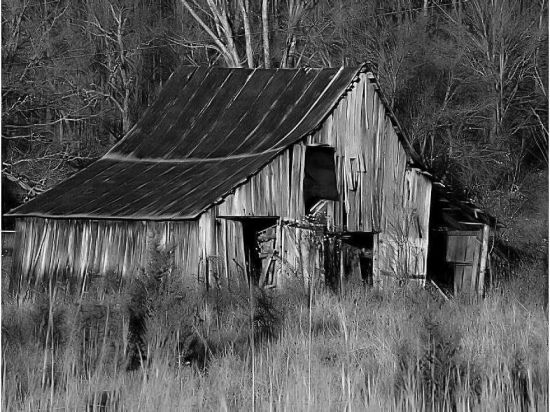 Pix For Old Barn Pictures Black And White