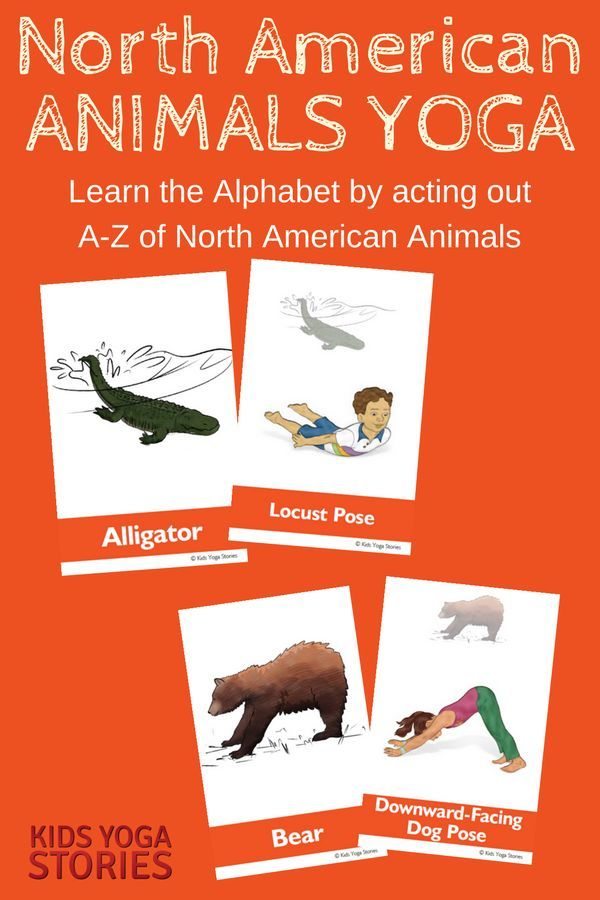 North American Animals Alphabet Yoga For Kids