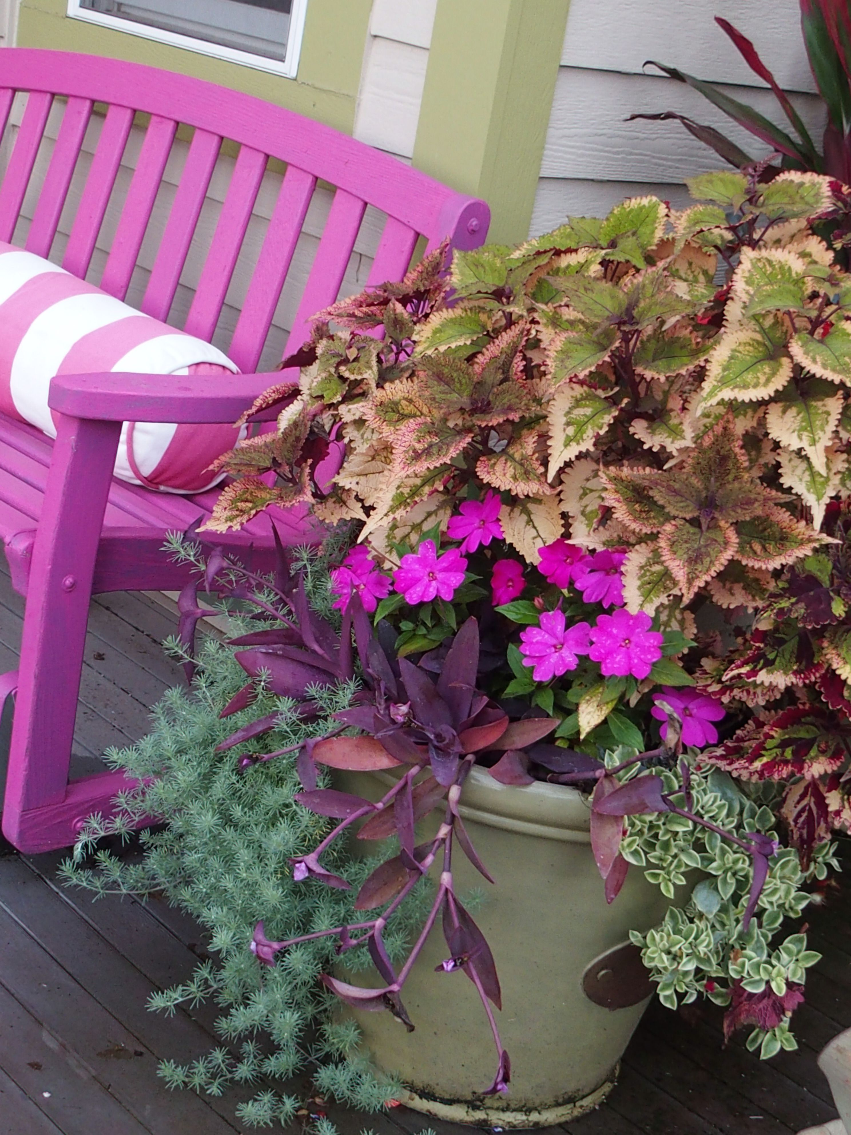 Summer flowers planters annuals curb appeal pink bench garden summer flowers planters annuals curb appeal pink bench garden design izmirmasajfo