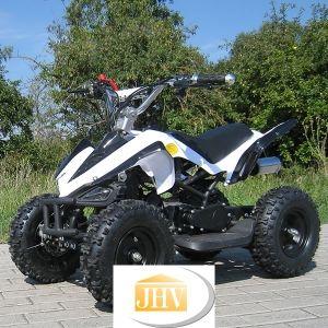 Quad, Buggy, Bikes, Trikes,Kinderquadbahn,  Eventartikel und mehr - Miniquad Racer 49 cc 2-takt mit CE