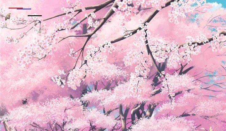 Anime Cherry Blossom Wallpaper 72 Images Sakura Cherry Blossom Ultra Hd Desktop Background Wallpaper Cherry Blossoms Anime Scenery Wallpapers Top Free Cherry In 2020