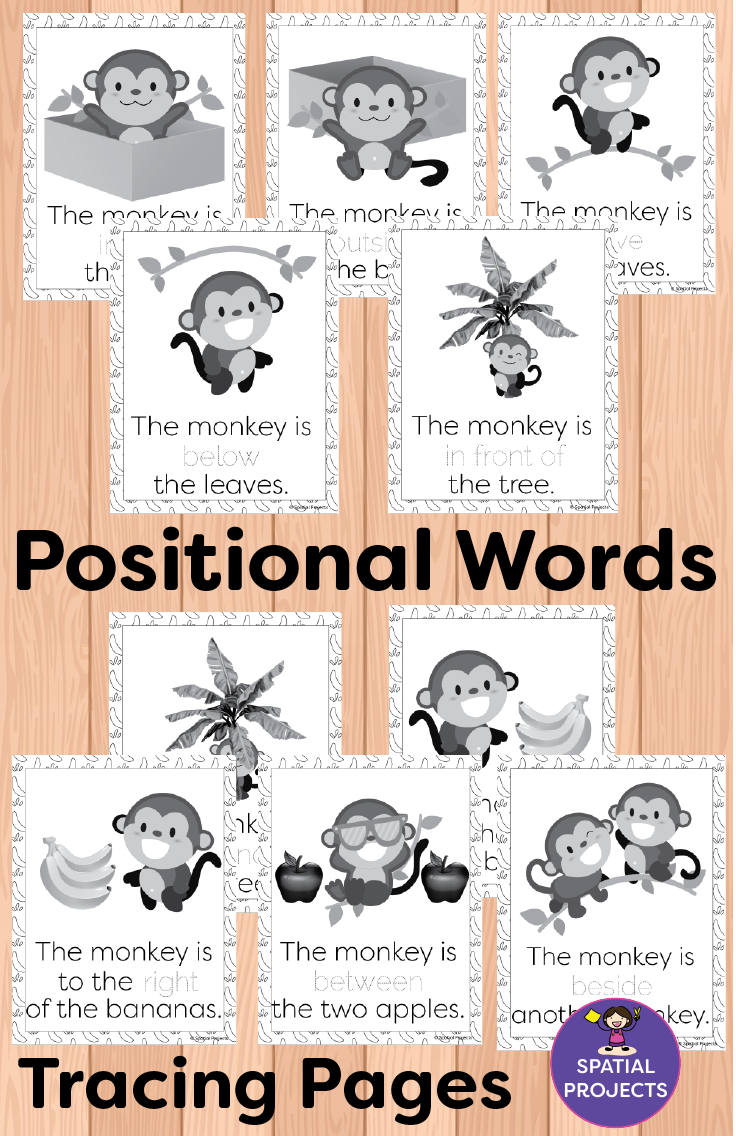 Check Out This Spatial Concepts Resource It Is Filled With Positional Words Activities An Word Activities Literacy Center Activity Positional Words Activities [ 1136 x 736 Pixel ]