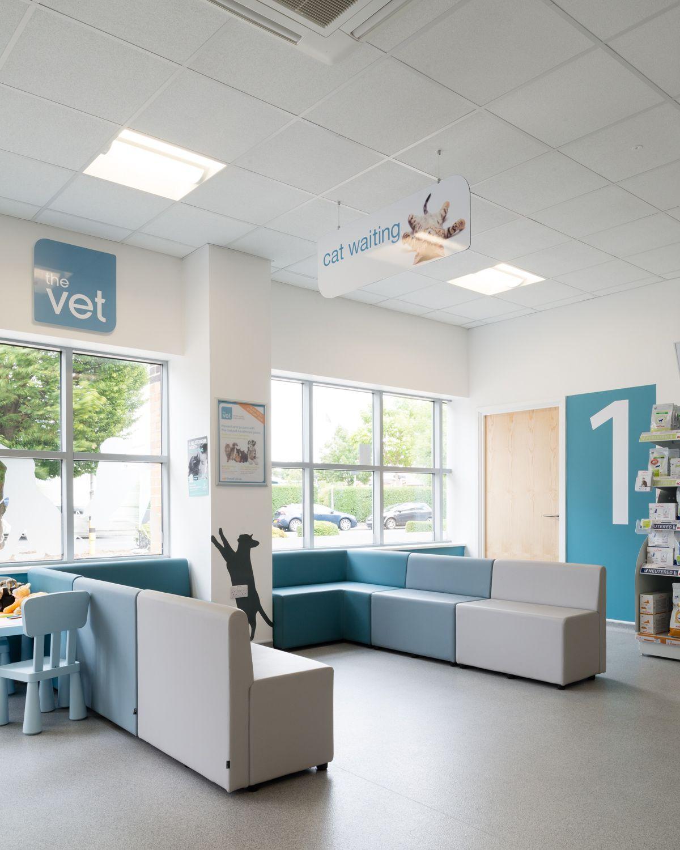 Clinique vétérinaire vet office pet shop pet