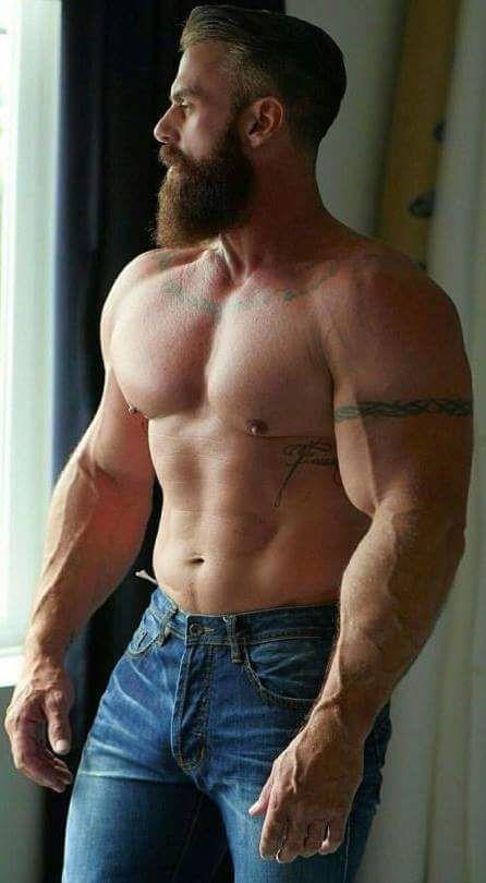 torren davis bodybuilder